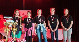 Irány az országos döntő - aranyérem a megyei elsősegélyversenyen